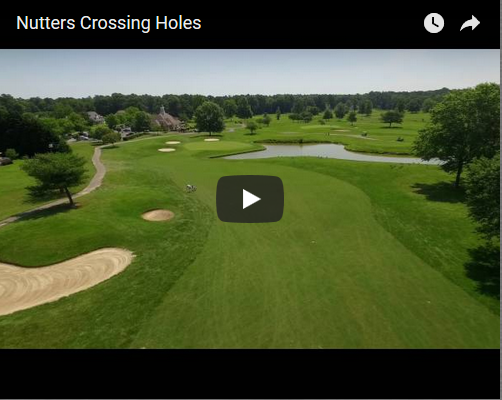 nutters hole video image