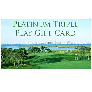 Image of Platinum gift card